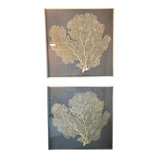 Large Framed Resin Sea Fan on Linen in Metal Minimalist Frame For Sale