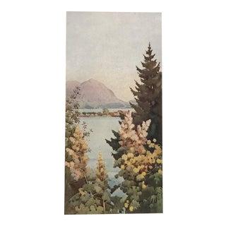 1905 Original Italian Print - Italian Travel Colour Plate - a Garden For Sale