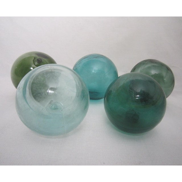 Oversize Glass Floats - Set of 5 - Image 4 of 4