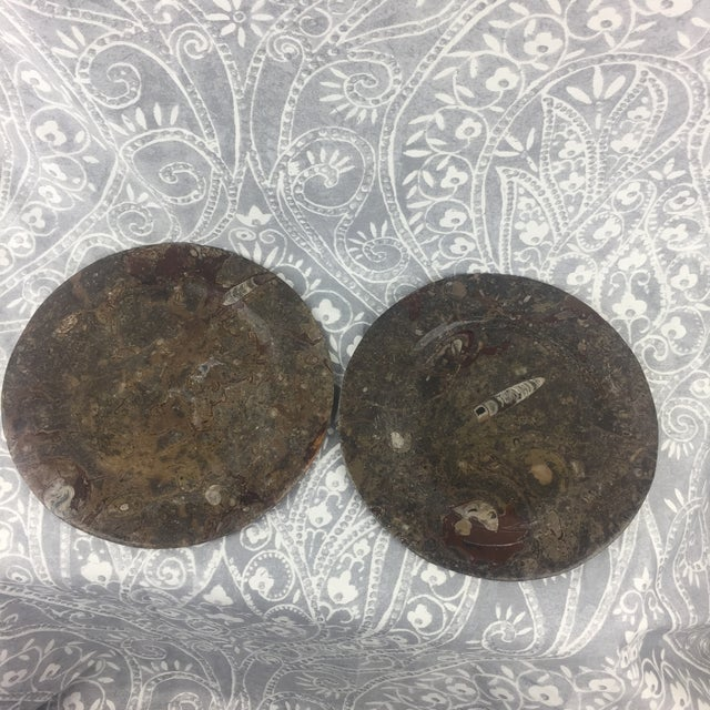 Orthoceras Red Brown Fossil Stone Plates- a Pair For Sale - Image 4 of 12