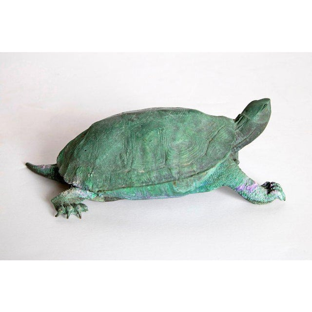Late 19th Century Japanese Bronze Tortoise, Meiji Period For Sale - Image 10 of 13