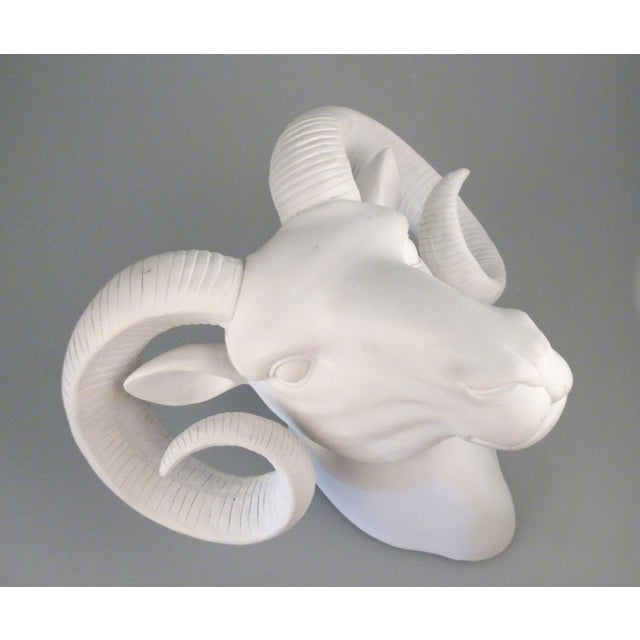 Vintage White Plaster Rams Head Wall Art For Sale In Miami - Image 6 of 9