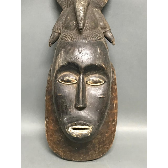Mid 20th Century African Tribal Art Baule Wood Mask For Sale - Image 5 of 8