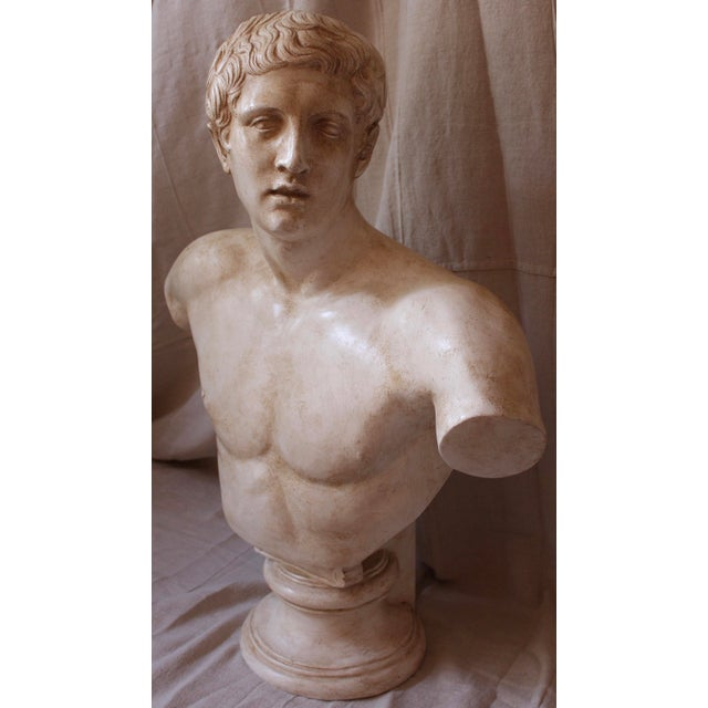 Vintage Bust of a Roman Athlete - Image 3 of 8