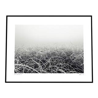 'Seabed' Photograph by Enric Gener Black Framed For Sale