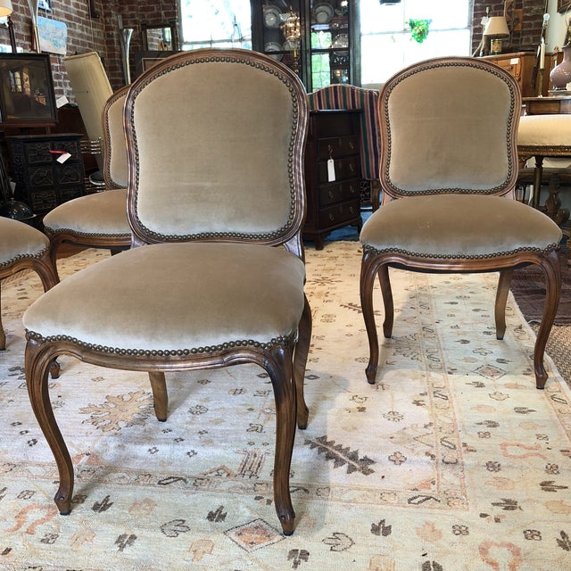 Louis XV Style Walnut Dining Chairs - Set of 4 - Image 3 of 9