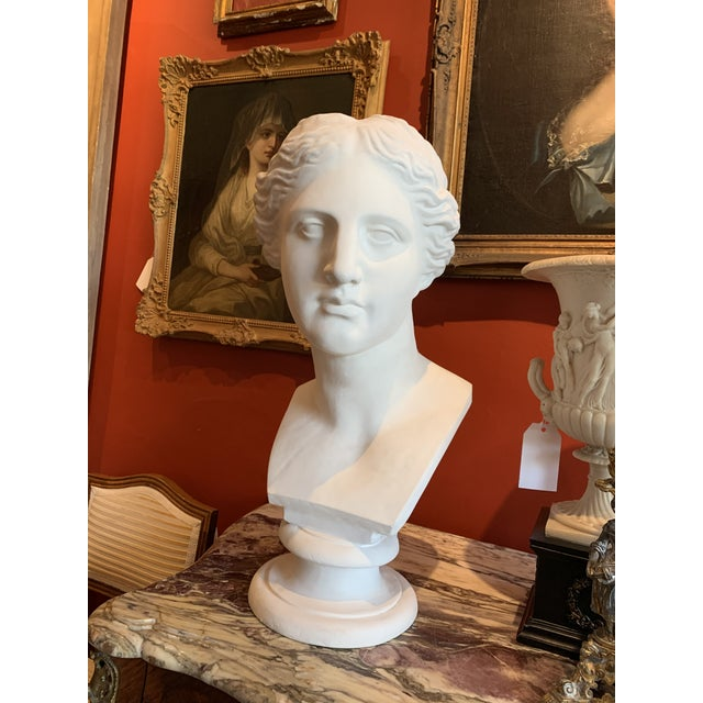 Large impressive plaster bust of Appeals site. In great shape, medium heavy Originally Posted nap copy from the famous...
