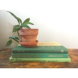Vintage Botanical Books - Set of 3 Preview