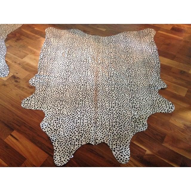 Brazilian Cheetah Print Cowhide Rug - 5′ × 7′ - Image 2 of 6
