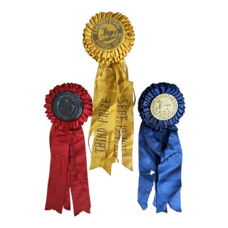 1923 Horse Show Rosette Award Ribbons - Set of 3 For Sale