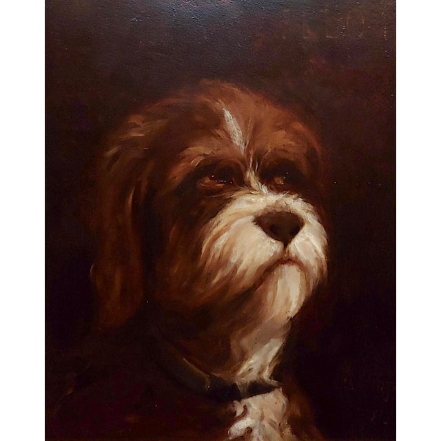 English Traditional 19th Century Portrait of a Fluffy Dog - Oil Painting For Sale - Image 3 of 11