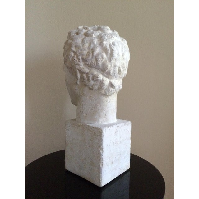 Lifesize Plaster Bust of Hermes For Sale In Los Angeles - Image 6 of 11