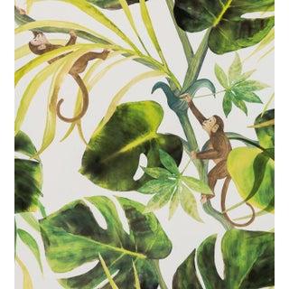 Monkey Business Wallpaper by Clarke & Clarke - Sample For Sale