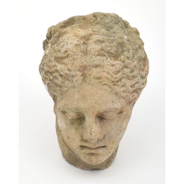 French Antique Stone Bust of Greek Goddess Athena For Sale - Image 3 of 10