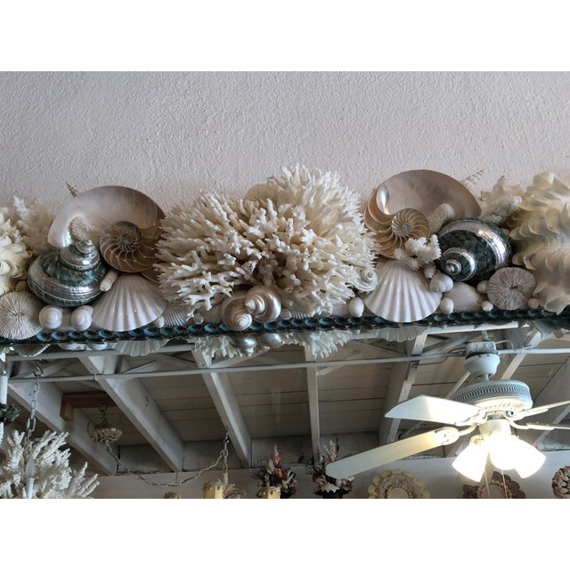 Coral Horizontal Shell Mirror For Sale - Image 7 of 8