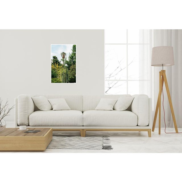 Original photograph part of our Flora collection. Lightjet Type C Print 50x33in Other Sizes available: 13x19 / 16x20 /...