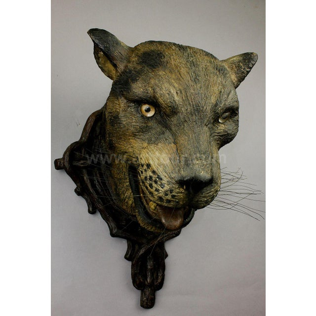 Wood A Gorgeous Pair Of Leopard Heads, Austria Ca. 1890 For Sale - Image 7 of 12