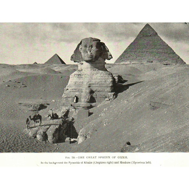 A History of Egypt - Image 3 of 3