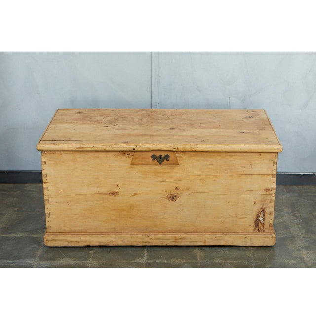 Large English Pine Trunk For Sale - Image 4 of 9