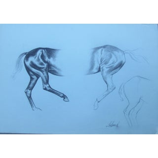 1960s Americana Horse Drawing by Thad Emory Leland For Sale
