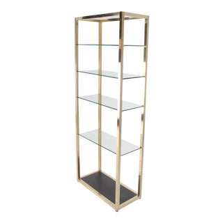 Mid-Century Modern Glass and Metal Etagere For Sale