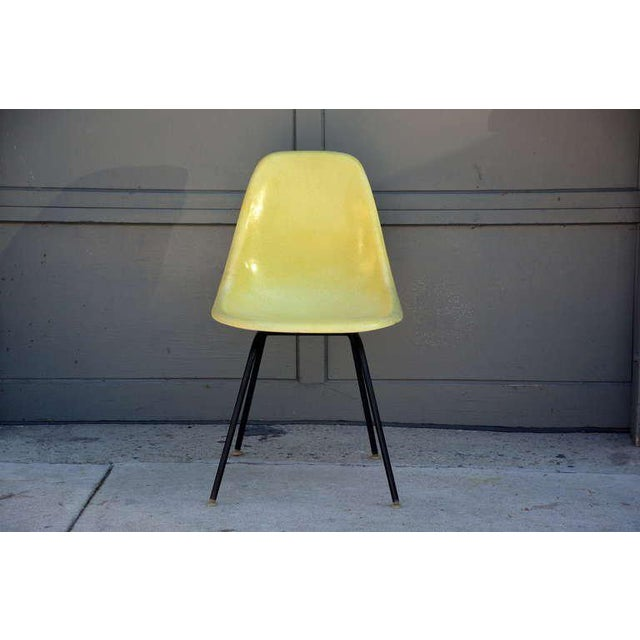 Eames Chairs by Herman Miller - Set of 4 For Sale - Image 9 of 9