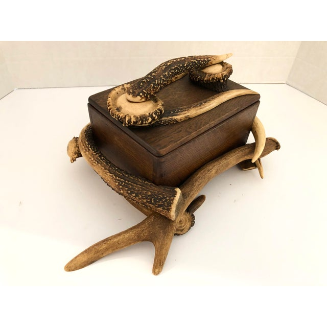Tan Black Forest Wood Box With Natural Antlers For Sale - Image 8 of 13
