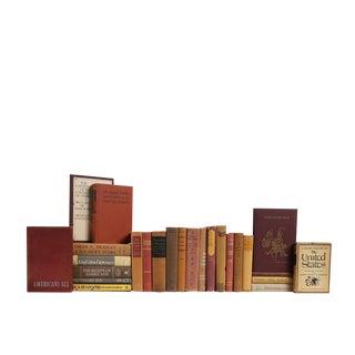 Cobblestone Road American History : Set of Twenty-Five Decorative Books For Sale