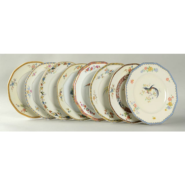 Vintage Mixed Bird Dinner Plates - Set of 8 For Sale - Image 10 of 10