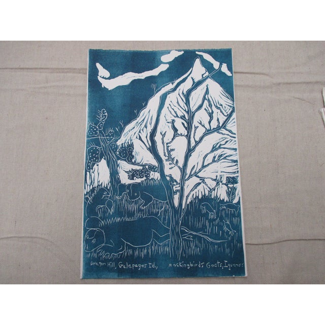 Late 20th Century Vintage Lithograph in Blue and White About the Galapagos For Sale - Image 5 of 5