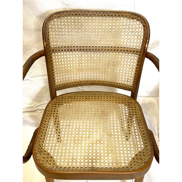 Rare Antique Stendig Set of 4 Bentwood French Stitched Nylon Cane Wood Dining Chairs For Sale - Image 9 of 13