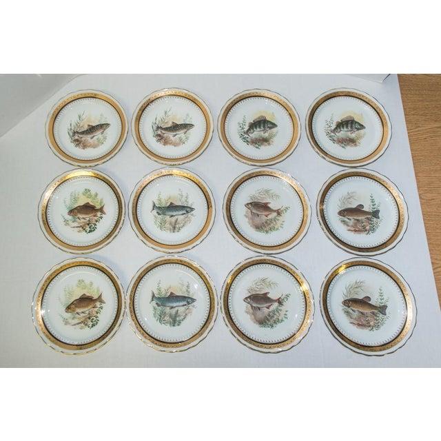 French Vintage French Porcelain Dinner Set - Set of 42 For Sale - Image 3 of 10