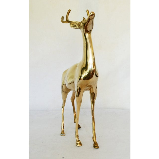Vintage Solid Brass Buck - Image 4 of 6