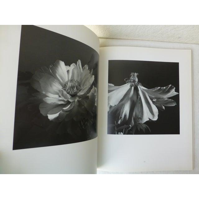 Hana, Yasuhiro Ishimoto Book For Sale - Image 9 of 11