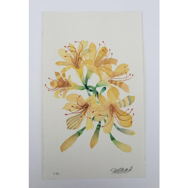 """Yellow Spider Lilies"" Original Watercolor Painting - Image 2 of 3"
