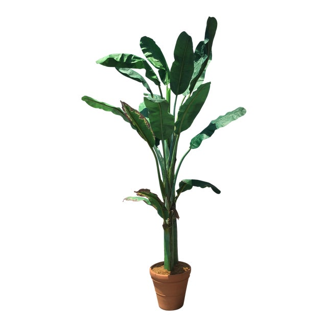 Fuax Silk Leaf Banana Tree Decor For Sale
