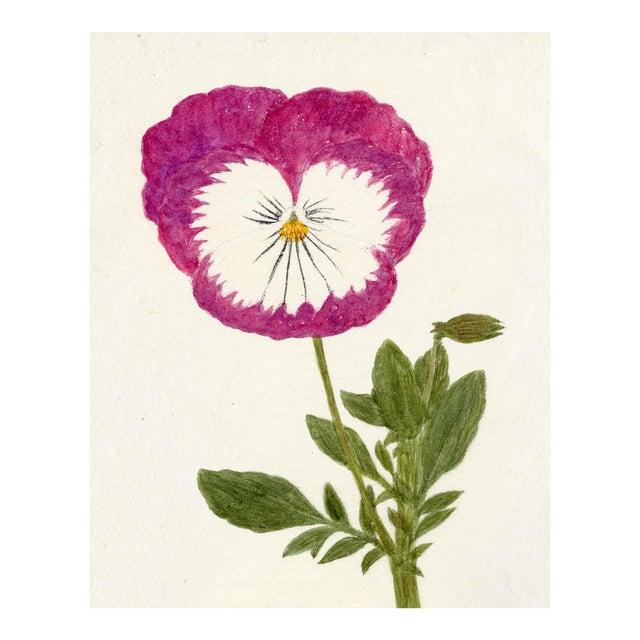 Hubbard Flower, Small: 8053 Artwork, Unframed Artwork For Sale