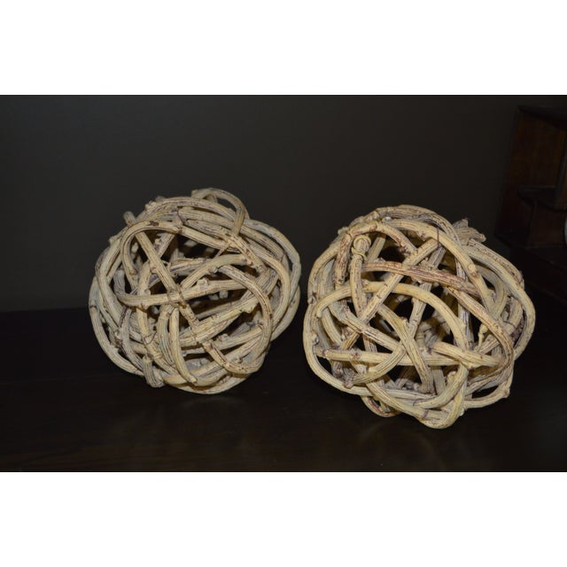 2010s Natural Windsor Knot Balls in Dried Wisteria Stems - a Pair For Sale - Image 5 of 10