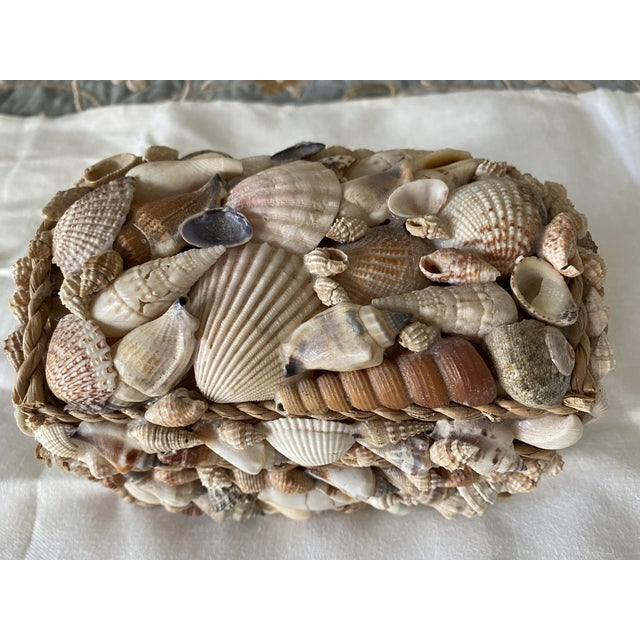Shabby Chic Shell Box For Sale - Image 3 of 4