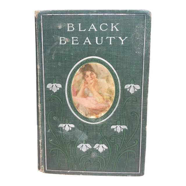 Black Beauty by Ana Sewell For Sale