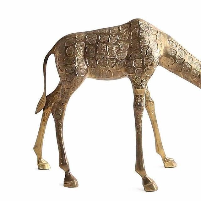 1970s Vintage Cast Bronze Giraffe Medium Sized Sculpture For Sale - Image 5 of 7