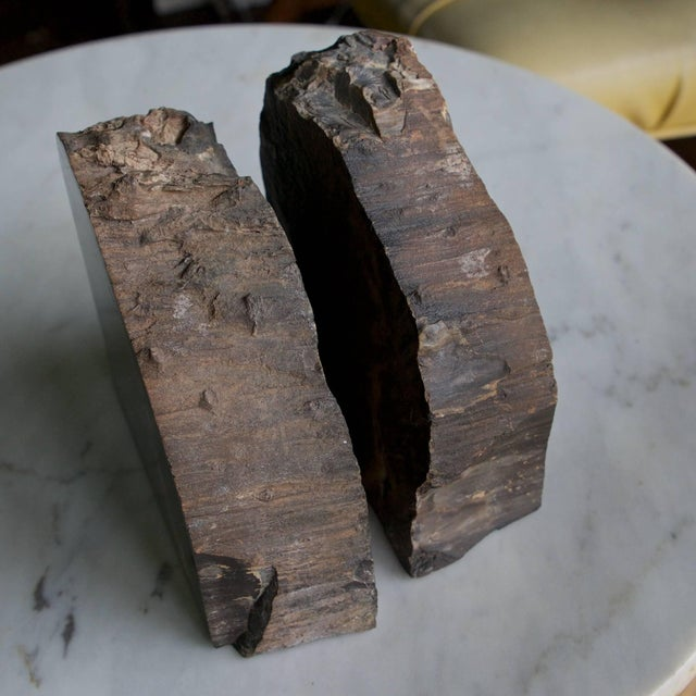 Wood Rare Bookmatched Black Petrified Wood Polished Monolithic Bookends For Sale - Image 7 of 8