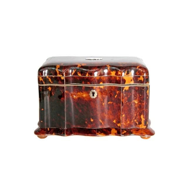Tortoise Shell Tea Caddy - Image 11 of 11