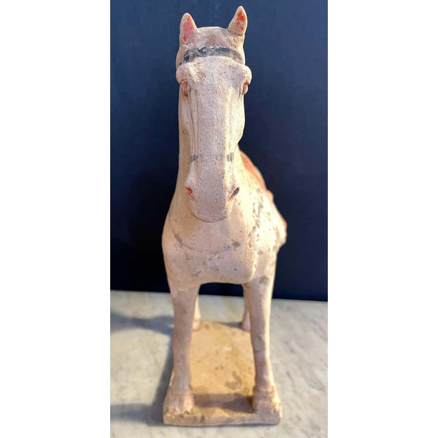 Antique Tang Pottery Horses - a Pair For Sale - Image 12 of 13