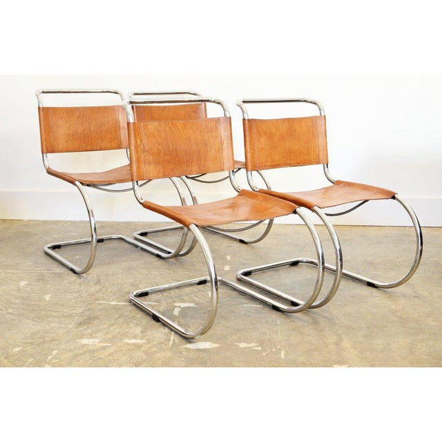 Brown Set of Six Cantilever Chairs by Mies Van Der Rohe For Sale - Image 8 of 8