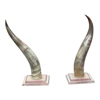 Mid-Century Modern Horns on Lucite Bases - a Pair