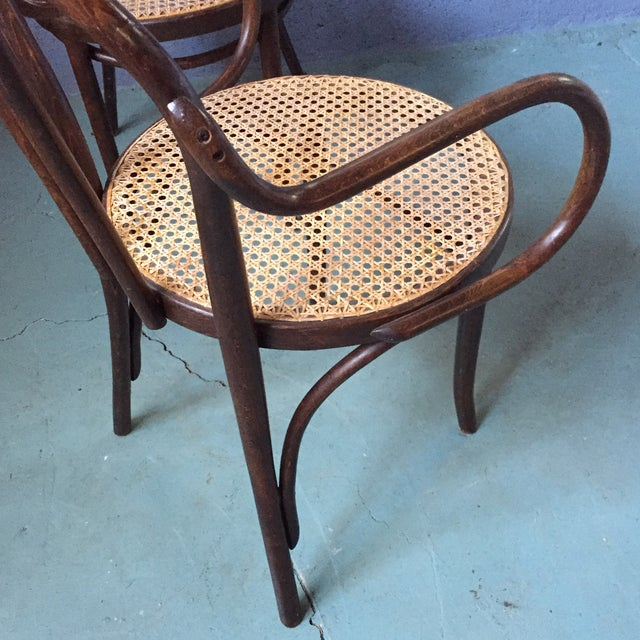 Thonet Bentwood Armchairs With Cane Seats - A Pair - Image 10 of 11