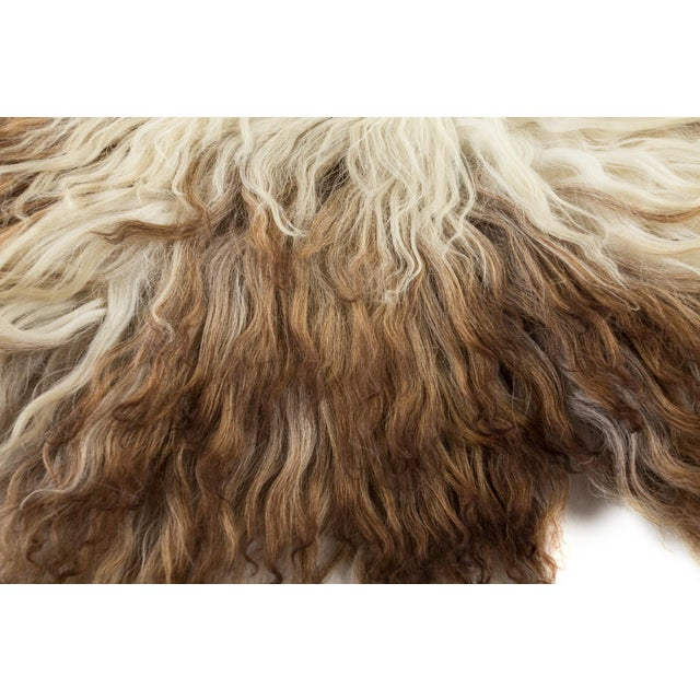 """2010s Contemporary Natural Wool Sheepskin Pelt Rug - 2'2""""x3'4"""" For Sale - Image 5 of 7"""