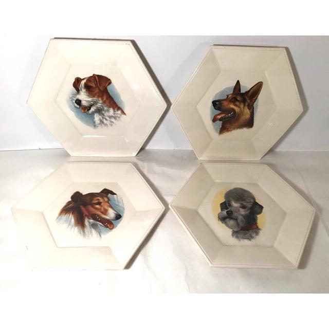 Set of four decorative ceramic dog plates. So fun and cute! Some crazing.