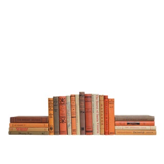 Midcentury Cinnamon & Sugar : Set of Twenty Decorative Books For Sale